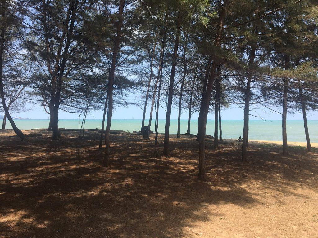 Pantai Teluk Mak Nik